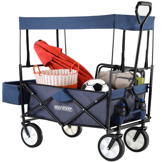 Pull Along Trolley Blue with Removable Roof